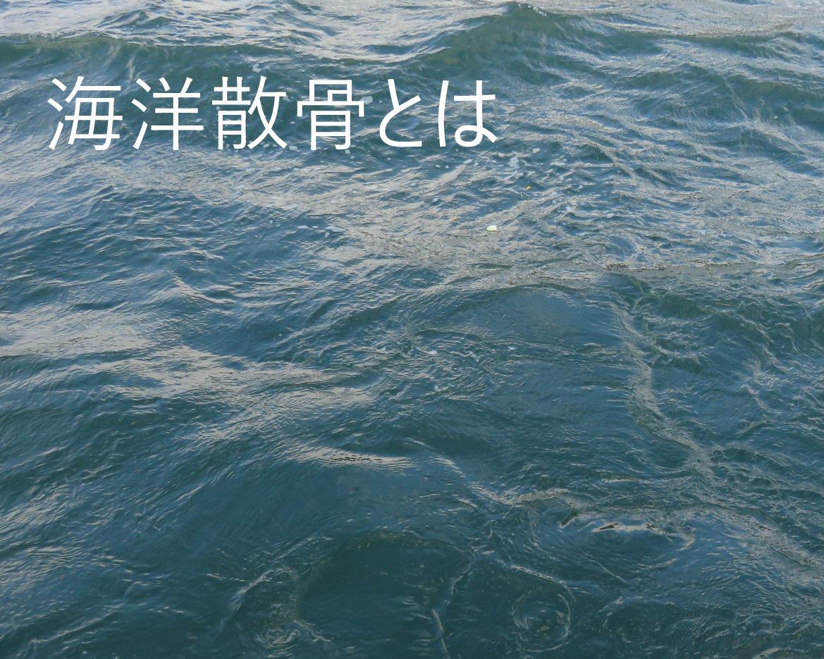 海洋散骨とはのイメージ